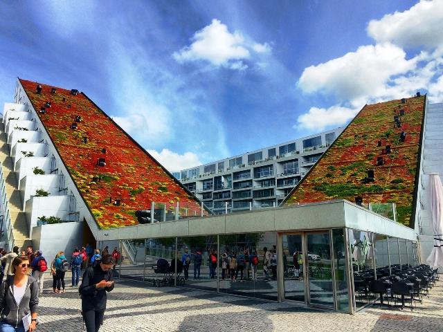Techos verdes en Copenhagen