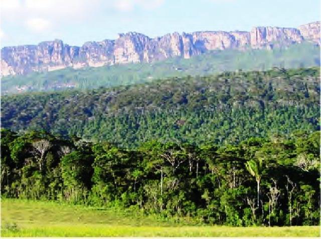 Guayaraca, Canaima, estado Bolívar Giuseppe Colonnello