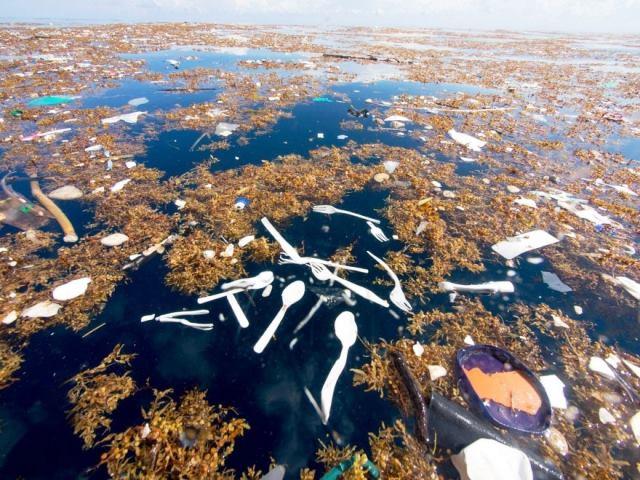 Océano de basura