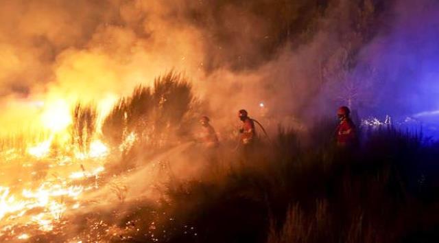 Incendios devastadores