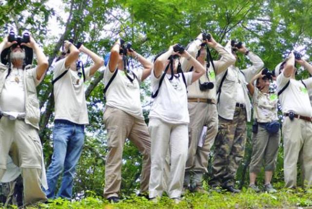 Observadores de aves. cortesia de conocimientos.com.ve