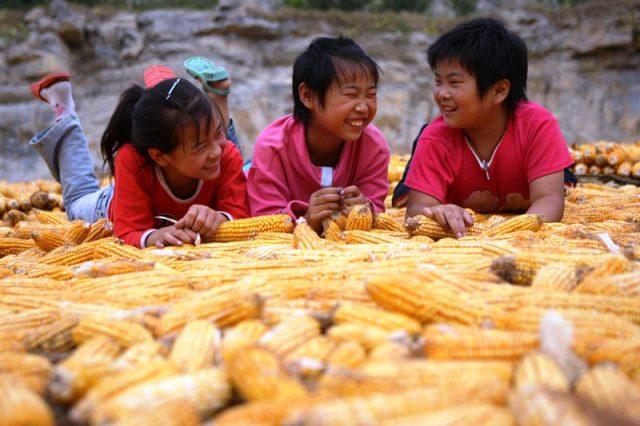 Agricultura mejorada en China