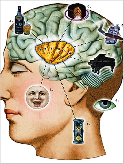 Aun falta mucho por descubrir sobre el cerebro