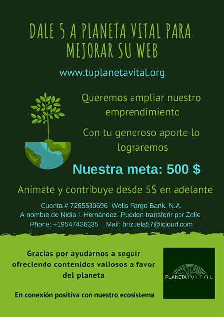 Dale 5 a planeta vital para mejorar su web
